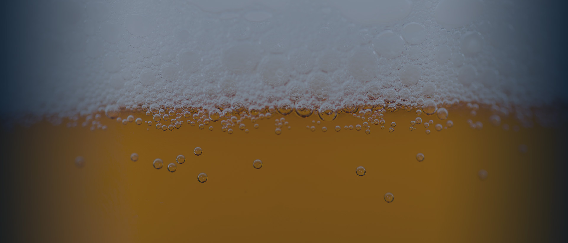 Draught Beer SA